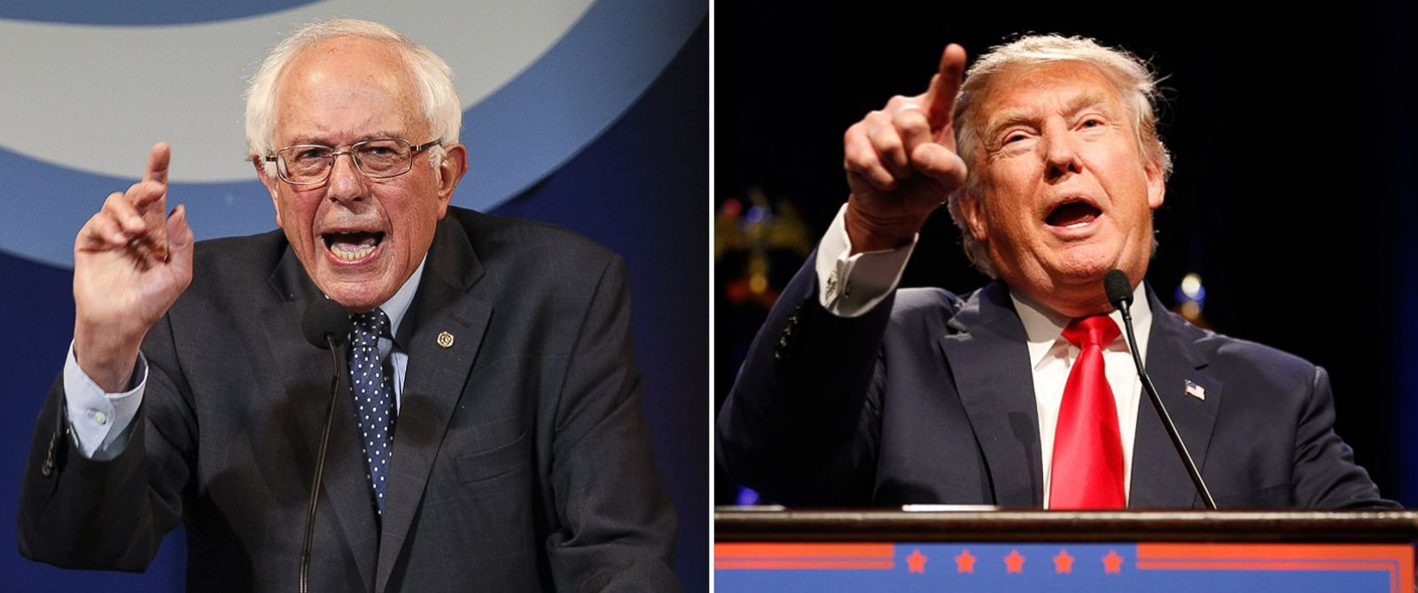marketing-bernie-vs-donald