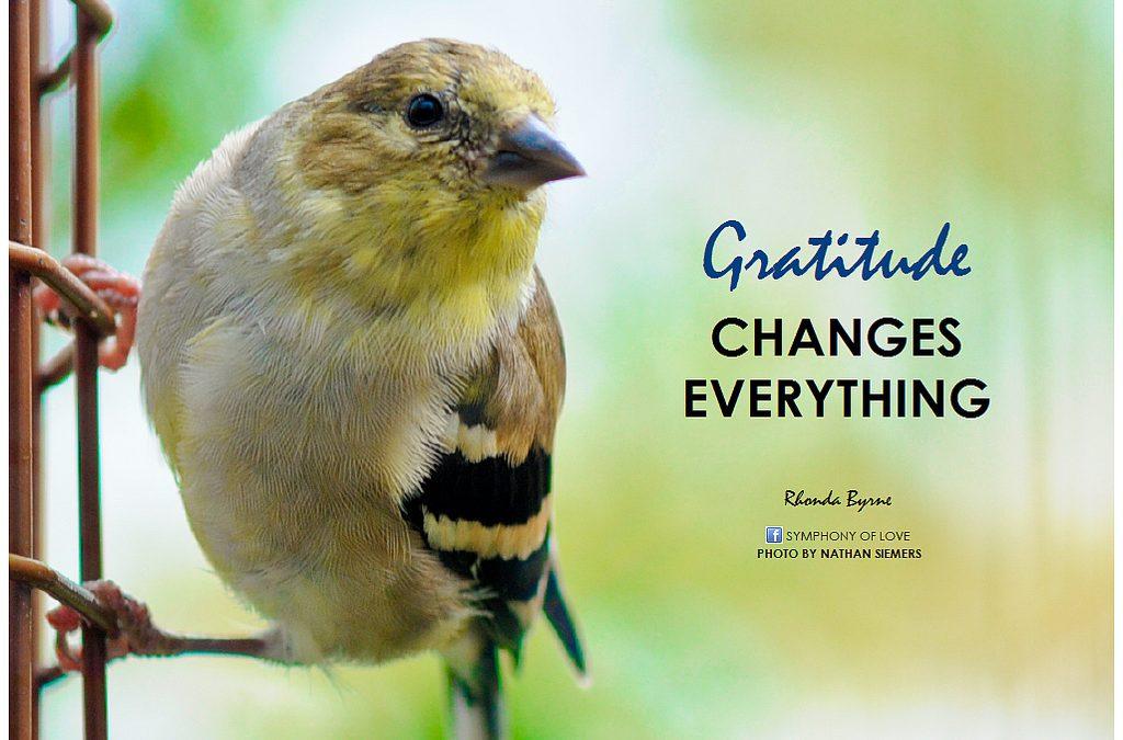 "Marketing with ""Gratitude"""
